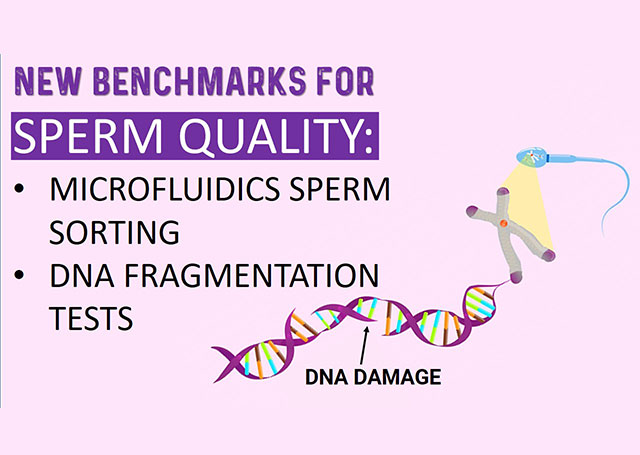 how-dna-fragmentation-and-microfluidics-are-changing-how-we-assess-sperm-quality