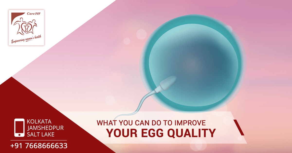 what-you-can-do-to-improve-your-egg-quality