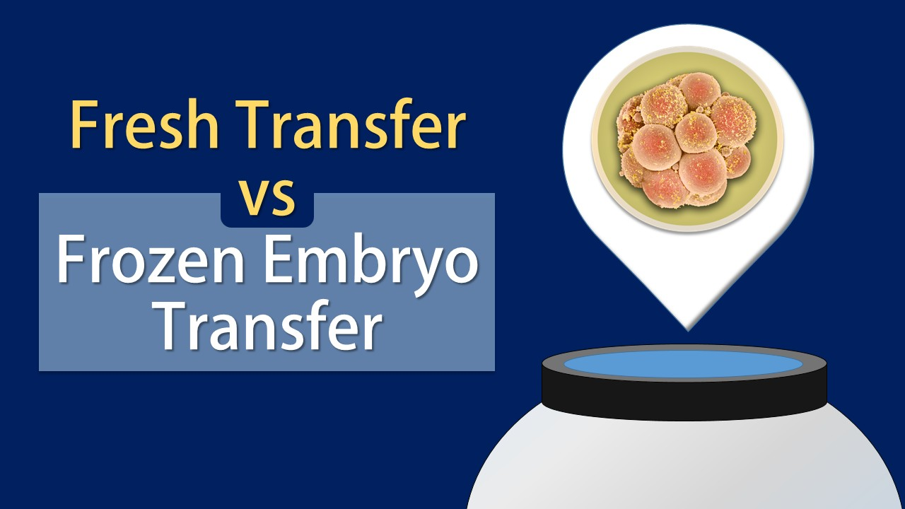 fresh-vs-frozen-embryo-transfer-which-option-yields-better-results